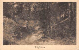 Ansichtkaart Wolfheze 1918 HC24454