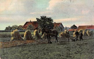 Ansichtkaart Baarn Augustus Eggen van de korenakker Boer met paard 1904 HC24853