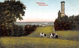 Ansichtkaart Valkenburg (LB) Wilhelminatoren met koeien in de wei 1920 HC24891