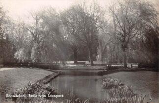 Ansichtkaart Roosendaal Emile van Loonpark Type fotokaart HC24960
