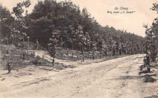 Ansichtkaart De Steeg Weg naar 't Asselt 1916 HC25059