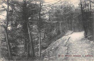 Ansichtkaart Emmen In de Emmer Dennen 1911 Drenthe HC25085