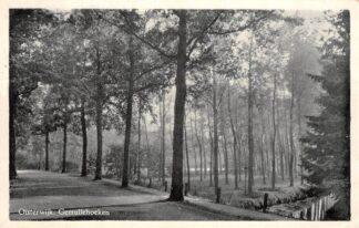 Ansichtkaart Oisterwijk Gemullehoeken 1950 HC25152
