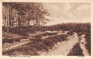 Ansichtkaart Lunteren Boschlaan bij de Goudberg 1931 Veluwe HC25384