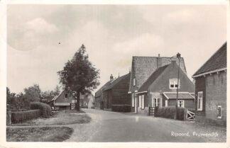 Ansichtkaart Rijsoord Pruimendijk Ridderkerk HC25747