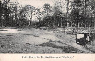 Ansichtkaart Wolfheze Duizend-jarige den bij Hotel - Restaurant Wolfhezen 1911 Renkum Veluwe HC25834