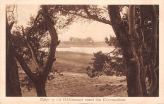 Ansichtkaart Uddel Garderen Kijkje op het Uddelermeer vanaf den Hunnenschans 1920 Veluwe HC25838