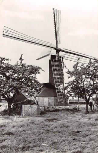 Ansichtkaart Beegden Molen op de heide 1973 Maasgouw Limburg HC26084