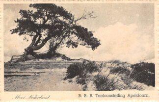 Ansichtkaart Apeldoorn B.B.B. tentoonstelling 1948 Veluwe Mooi Nederland HC26152