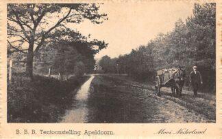 Ansichtkaart Apeldoorn B.B.B. tentoonstelling 1948 Mooi Nederland Veluwe Boer met paard en wagen HC26154