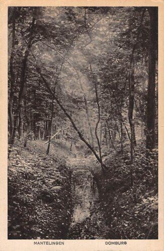Ansichtkaart Domburg Mantelingen 1921 HC26253
