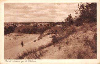 Ansichtkaart Elspeet In de duinen op de Veluwe HC26290