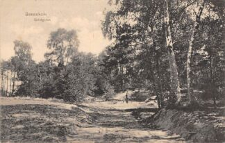 Ansichtkaart Bennekom Grintgaten 1915 Veluwe HC26813