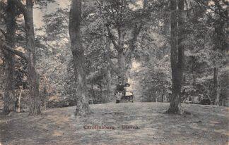 Ansichtkaart Dieren (GD) Carolinaberg 1913 HC26816