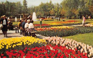 Ansichtkaart Lisse Keukenhof Holland in Bloementooi Bloembollenvelden HC27251
