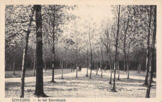 Ansichtkaart Schiedam In het Sterrebosch HC27319