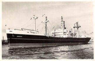 Ansichtkaart Rotterdam s.s. Abbedijk 1956 Holland Amerika Lijn Scheepvaart Schepen HC27351