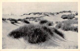 Ansichtkaart Oostvoorne aan Zee De mooie duinen HC27391