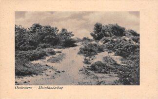 Ansichtkaart Oostvoorne aan Zee Duinlandschap 1951 HC27445