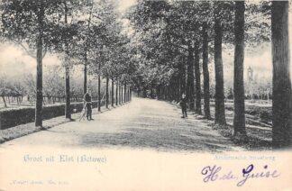 Ansichtkaart Elst (GD) Betuwe Arnhemsche Straatweg 1902 Vivat No. 2729 HC27528