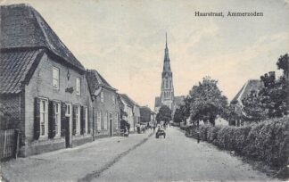Ansichtkaart Ammerzoden Haarstraat 1928 HC27529