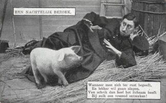 Ansichtkaart Militair Mobilisatie  1914-1918 Een nachtelijk bezoek van een varken bij een soldaat in het hooi HC27678