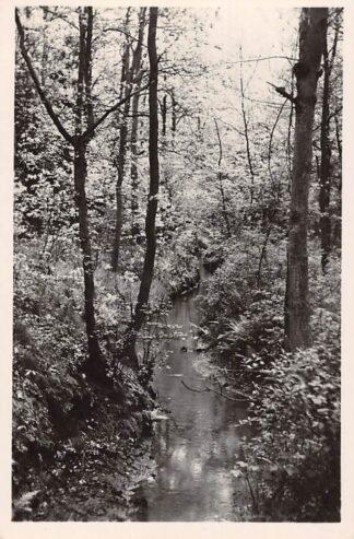 Ansichtkaart Arcen Het Lommerbeekje 1942 Venlo HC27721