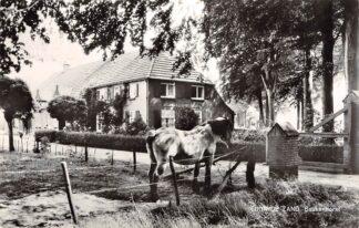 Ansichtkaart Loon op Zand Beukenhorst Paard 1965 HC27894