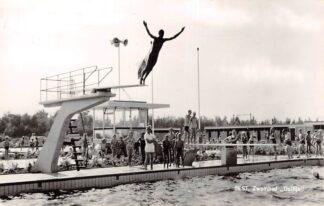 Ansichtkaart Best Zwembad Dolfijn 1965 HC27971