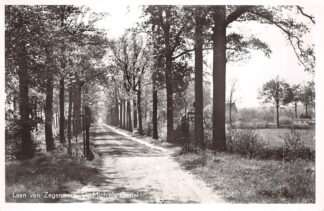 Ansichtkaart Sint-Michielsgestel Laan van Zegenwerp 1959 HC27986