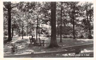 Ansichtkaart Heeze Rustig plekje in 't bos 1958 HC27996