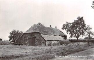 Ansichtkaart Sint Anthonis Brabants Landschap Boerderij Land van Cuyk HC28010