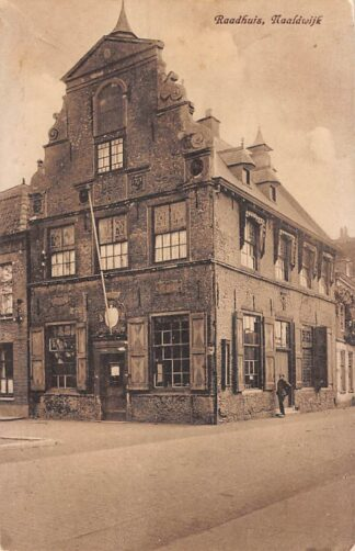 Ansichtkaart Naaldwijk Raadhuis 1927 Westland HC28530